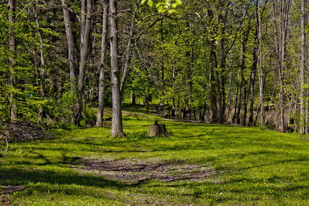 Richfield County Parks-34.jpg