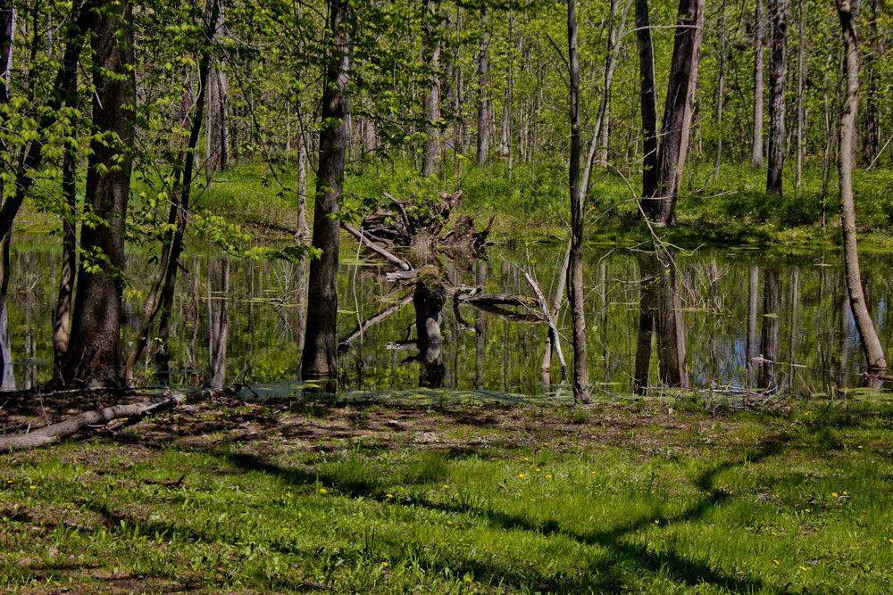 Richfield County Parks-35.jpg