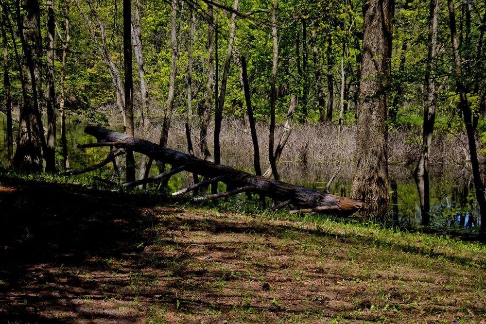 Richfield County Parks-36.jpg