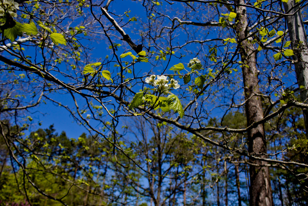 Richfield County Parks-37.jpg