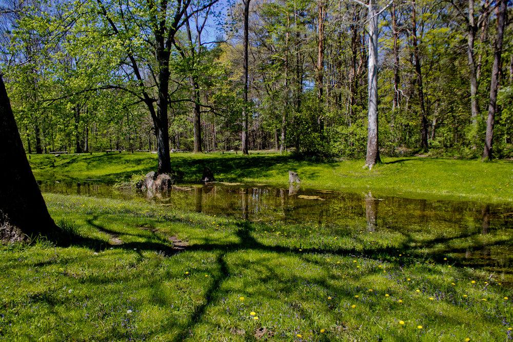 Richfield County Parks-38.jpg