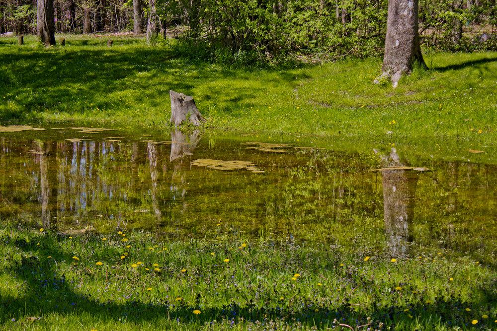 Richfield County Parks-39.jpg