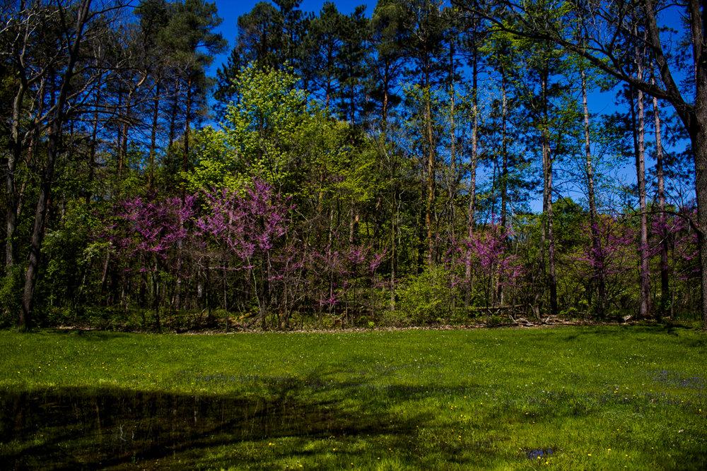 Richfield County Parks-40.jpg