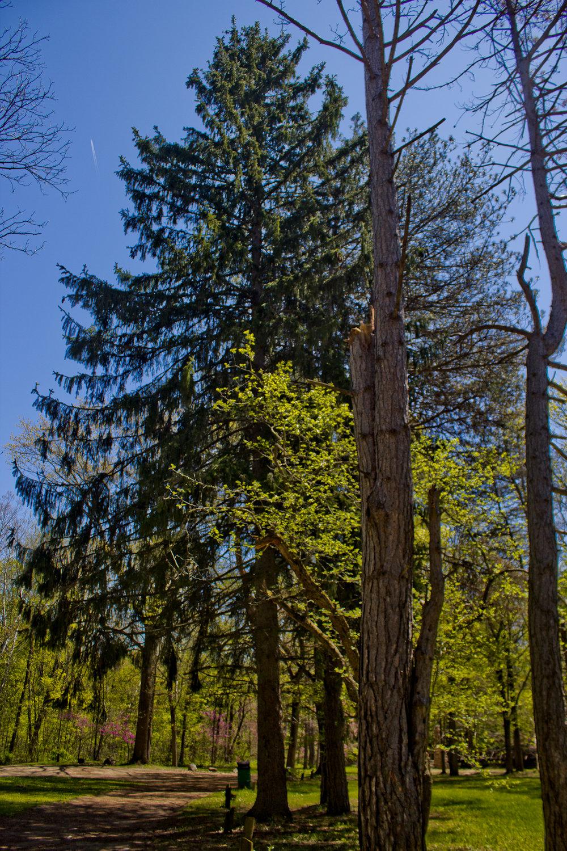 Richfield County Parks-46.jpg