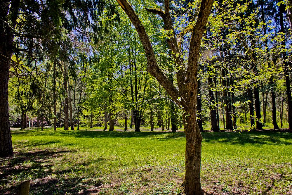 Richfield County Parks-47.jpg
