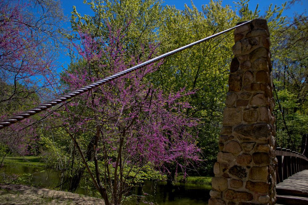 Richfield County Parks-49.jpg