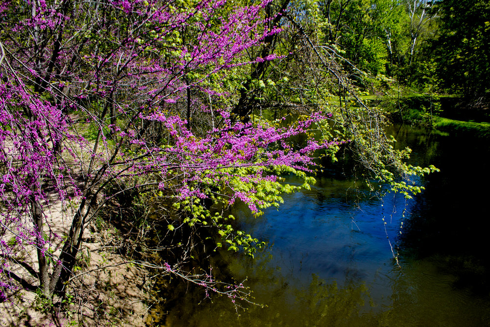 Richfield County Parks-51.jpg