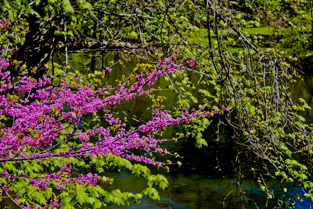 Richfield County Parks-52.jpg