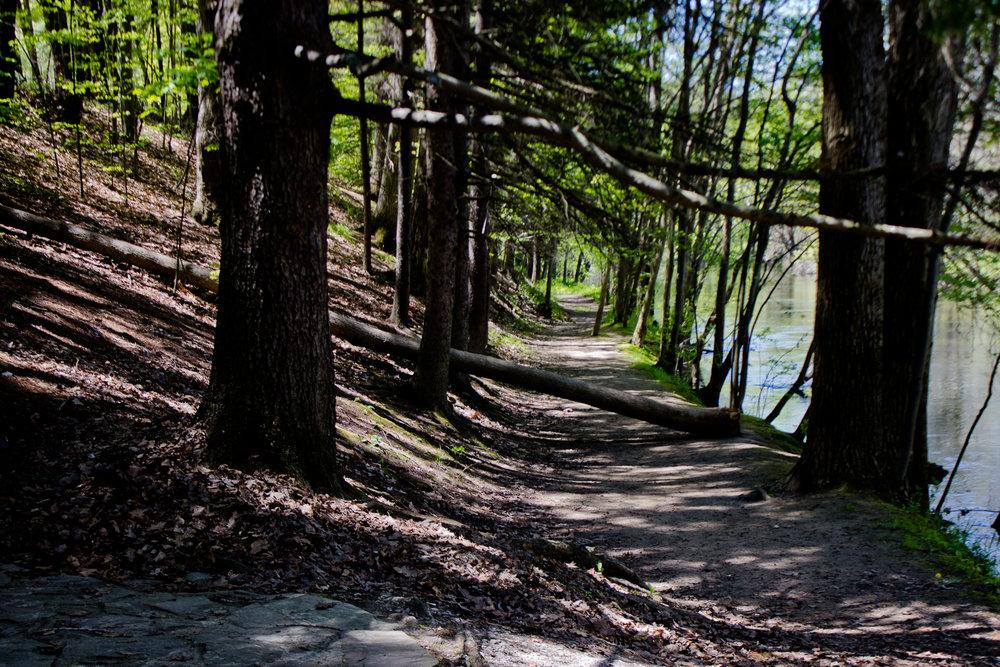 Richfield County Parks-55.jpg