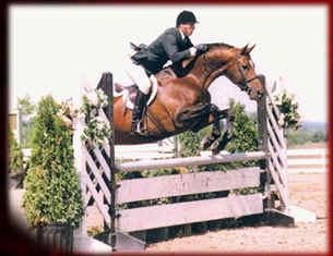 donny jump.jpg