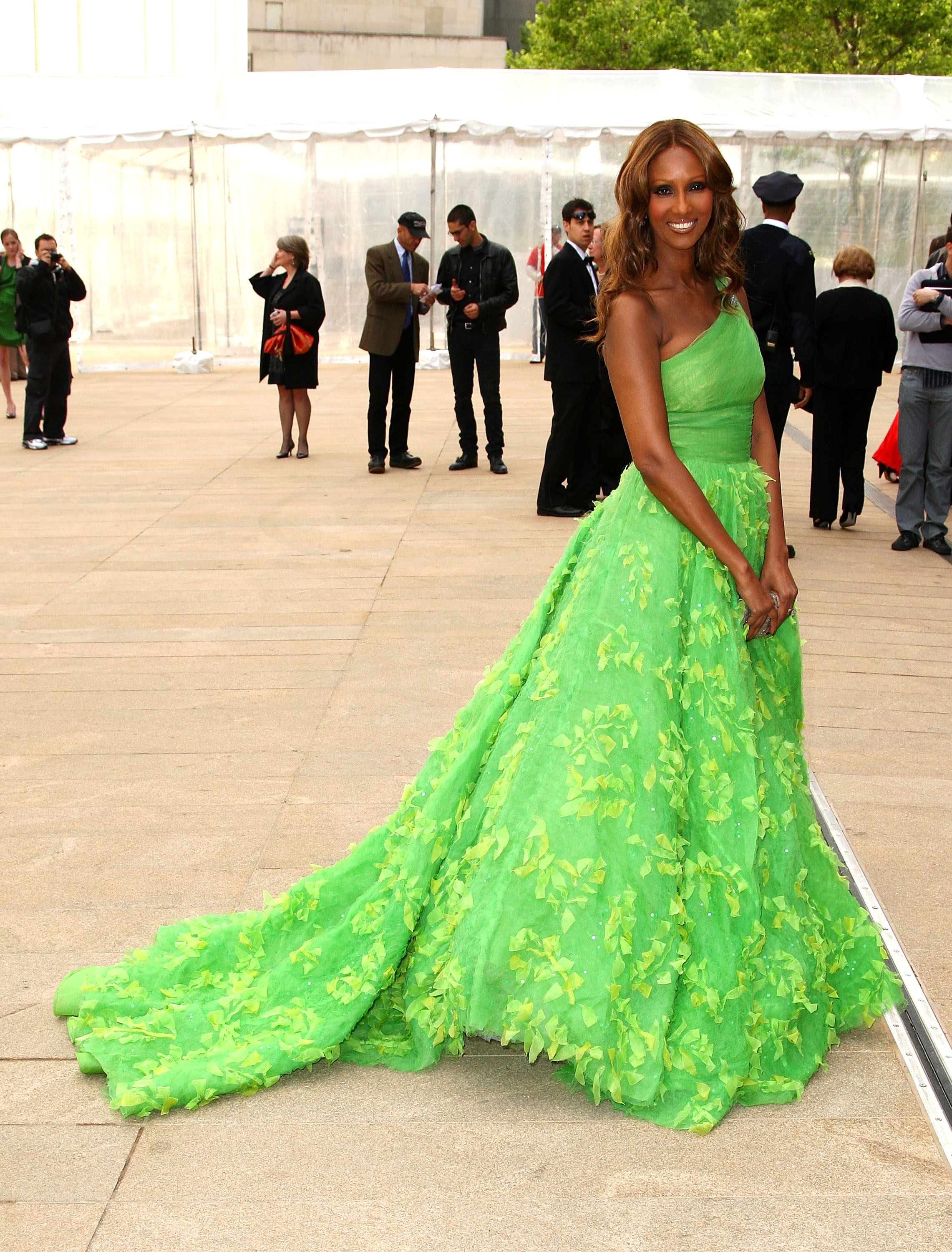 Model and entrepreneur Iman wearing a signature full skirt Oscar de la Renta gown at the 2009 American Ballet Theatre Gala / Photo Source: popsugar.com