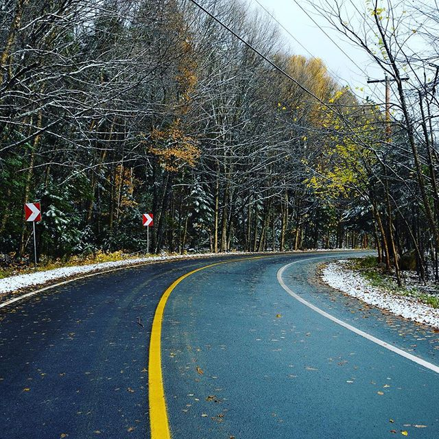 Up north, winter as arrived!! So beautiful • • • • • #fall #autumn #winter #snow #cold #trees #outdoors #leaves #naturelover #wildlife #forest #instanature #tree #mountain #october #fallcolors #snowing
