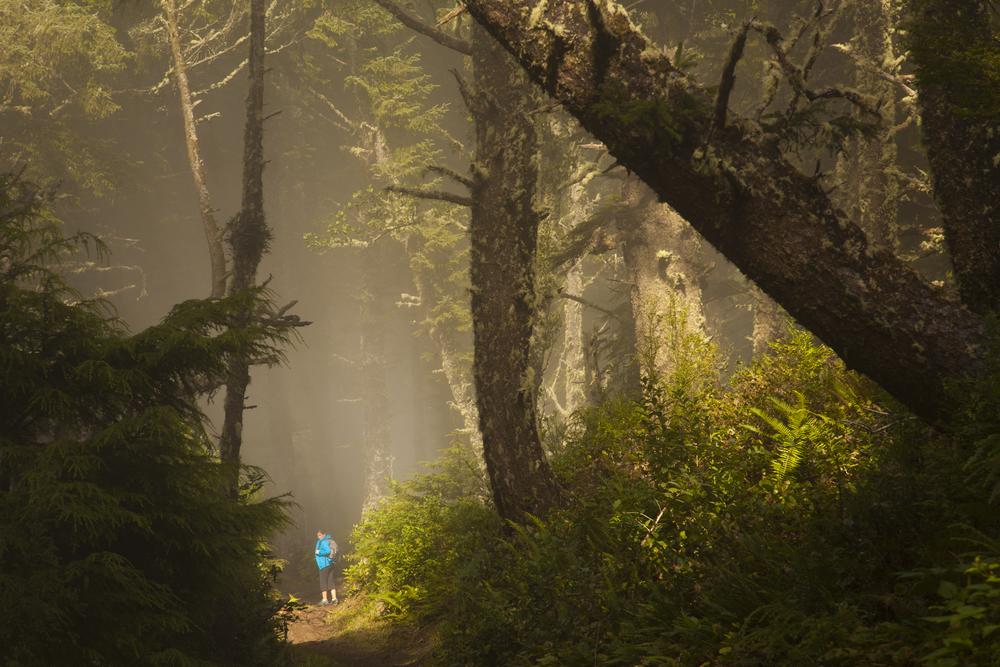 20120805_Oregon_2740.jpg
