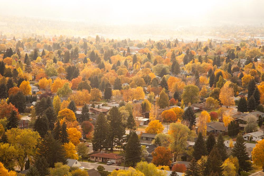 20111025_Autumn_1394.jpg