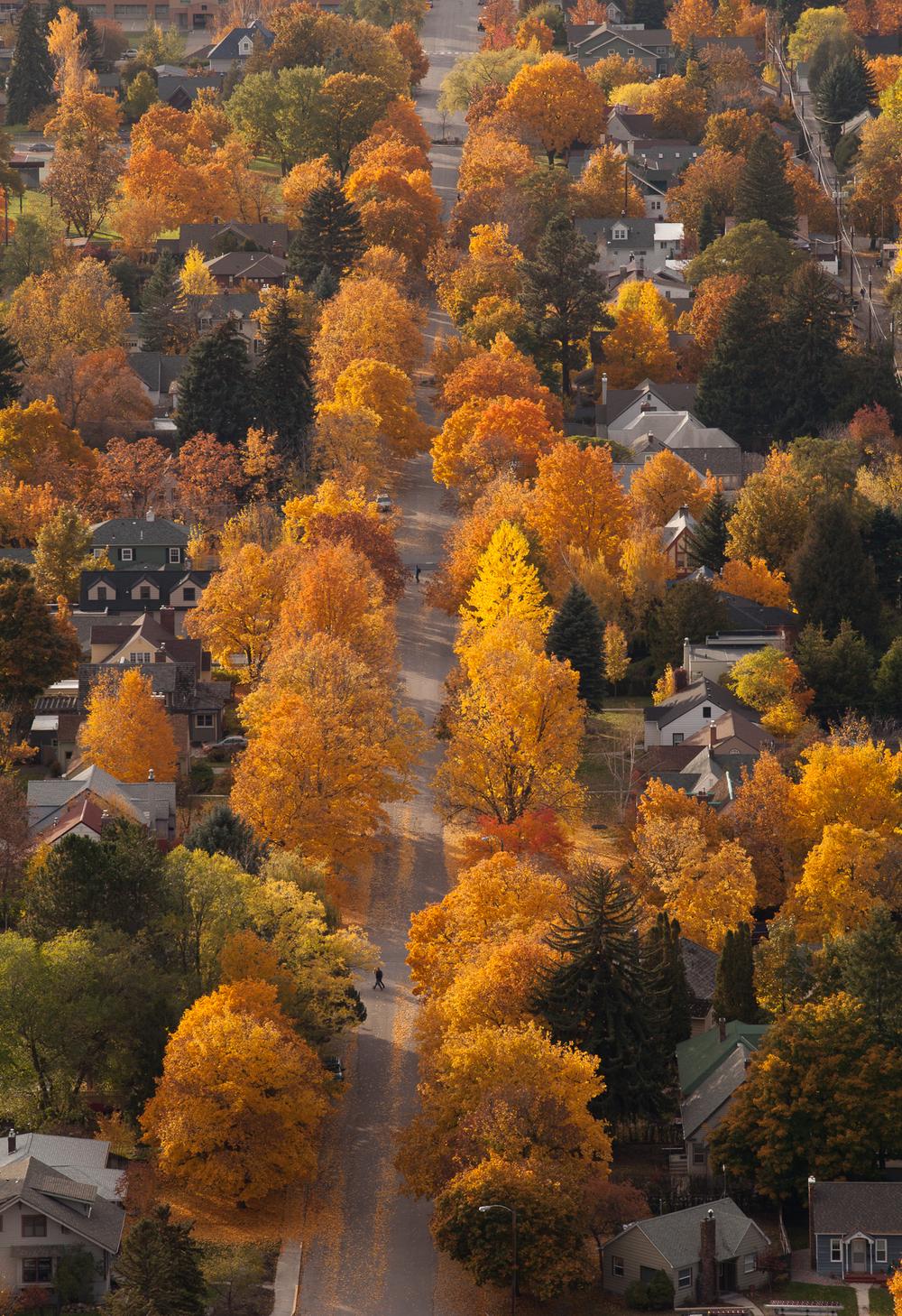 20111025_Autumn_1409.jpg