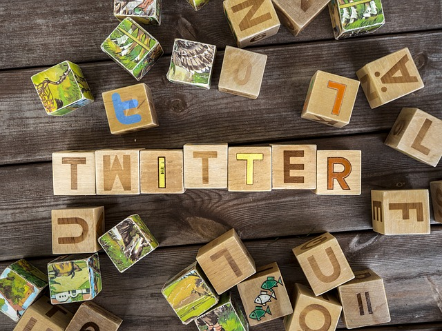 15 Best Twitter Accounts to Learn About Small Business local businesses social media.jpg