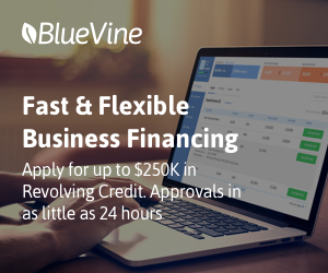 The Ultimate Guide to a Business Line of Credit Complete Blueprint for Your Businesses Growth Bluevine Capital Lending  Finance.jpg
