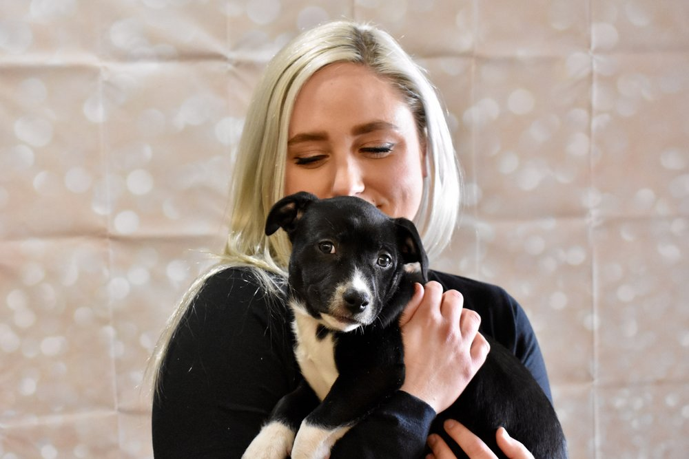 & what would bark and wine be with out little puppies! EVERYONE LOVED SNUGGLING SOME PUPPIES IN FRONT OF THE PHOTO WALL!