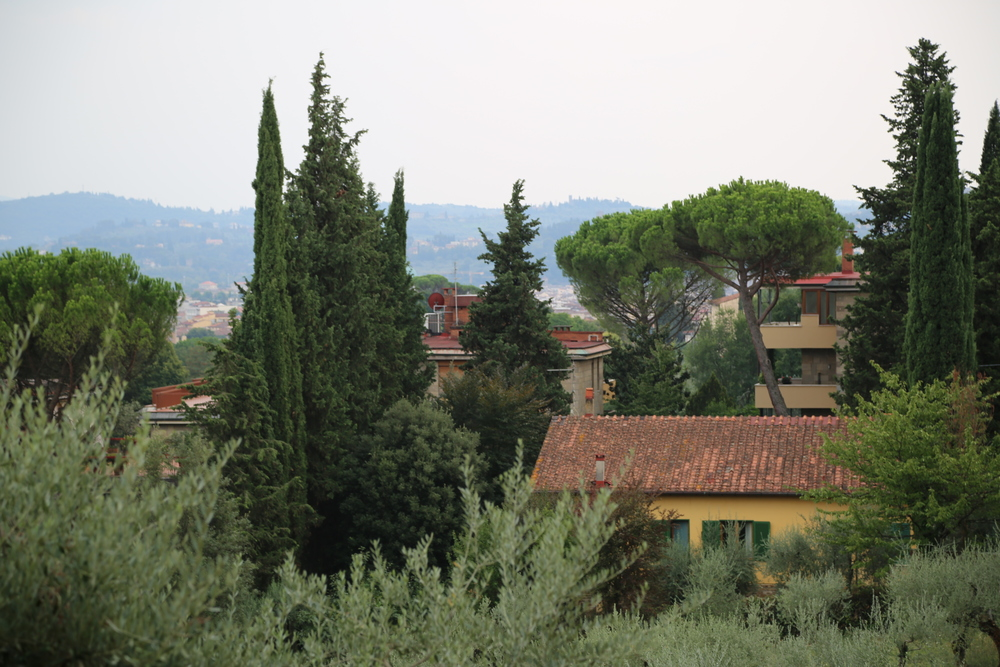 NYU-ITALY1.JPG