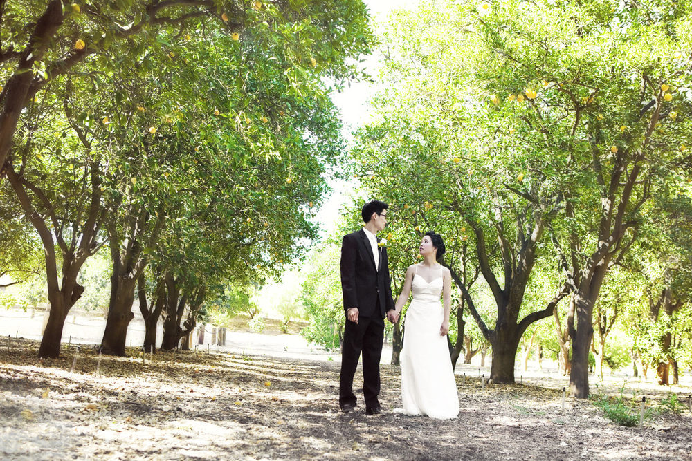 Orcutt Ranch Wedding | Stephen Grant Photography