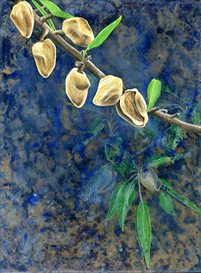 orchard022 FW.jpg