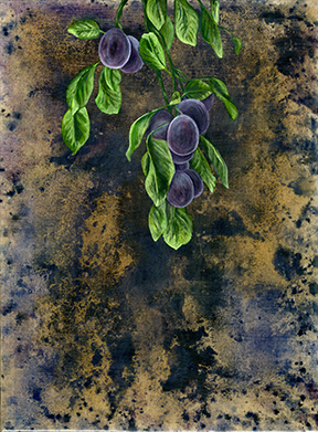 orchard024 FW.jpg