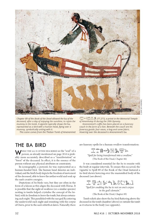 Nile 16, Spirit Birds 3B 35%.jpg