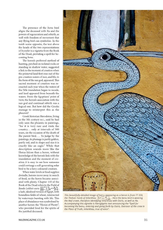Nile 16, Spirit Birds 2B 35%.jpg