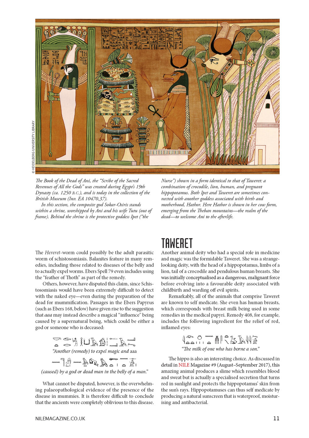 Nile 18, Animals 2 1A.jpg