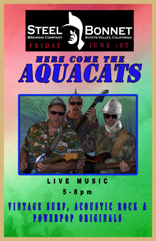 Aquacats Steel Bonnet Poster 6-1-18.png