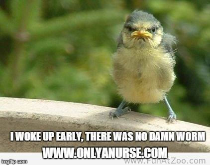 The early bird gets the worm, onlyanurse, funny nurse humor, nurse humor, nurse memes, funny nurse memes