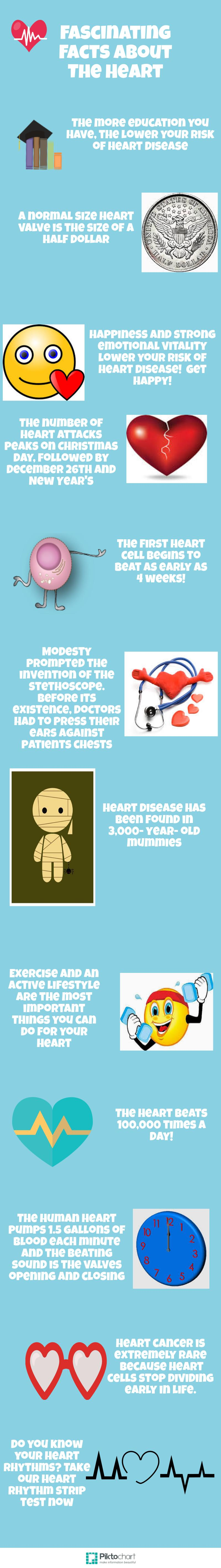 Fascinating Facts about the heart