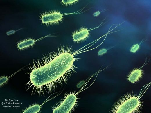 Obama fights back against antibiotic superbug