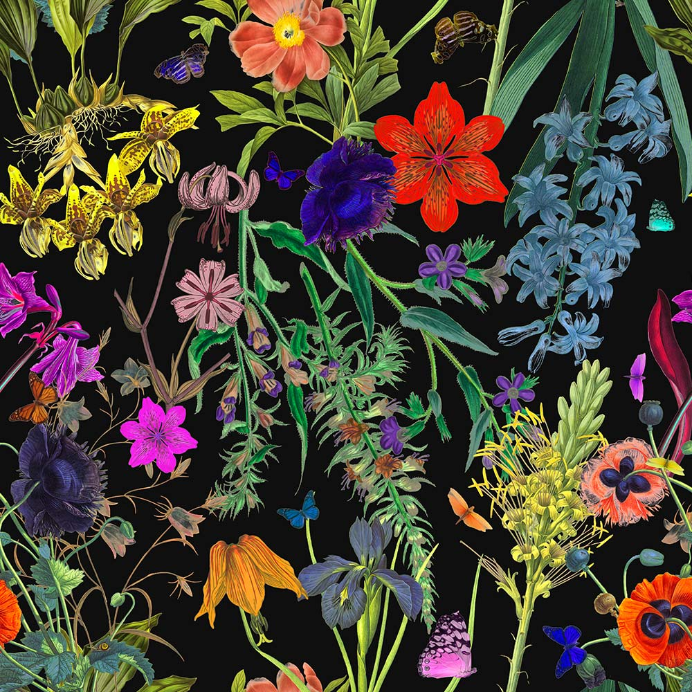 Bold Colorful Floral Wallpaper