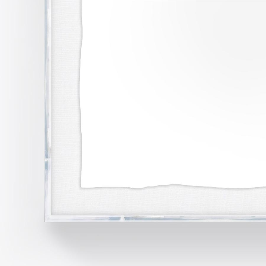 Luxe Lucite Shadowboxes