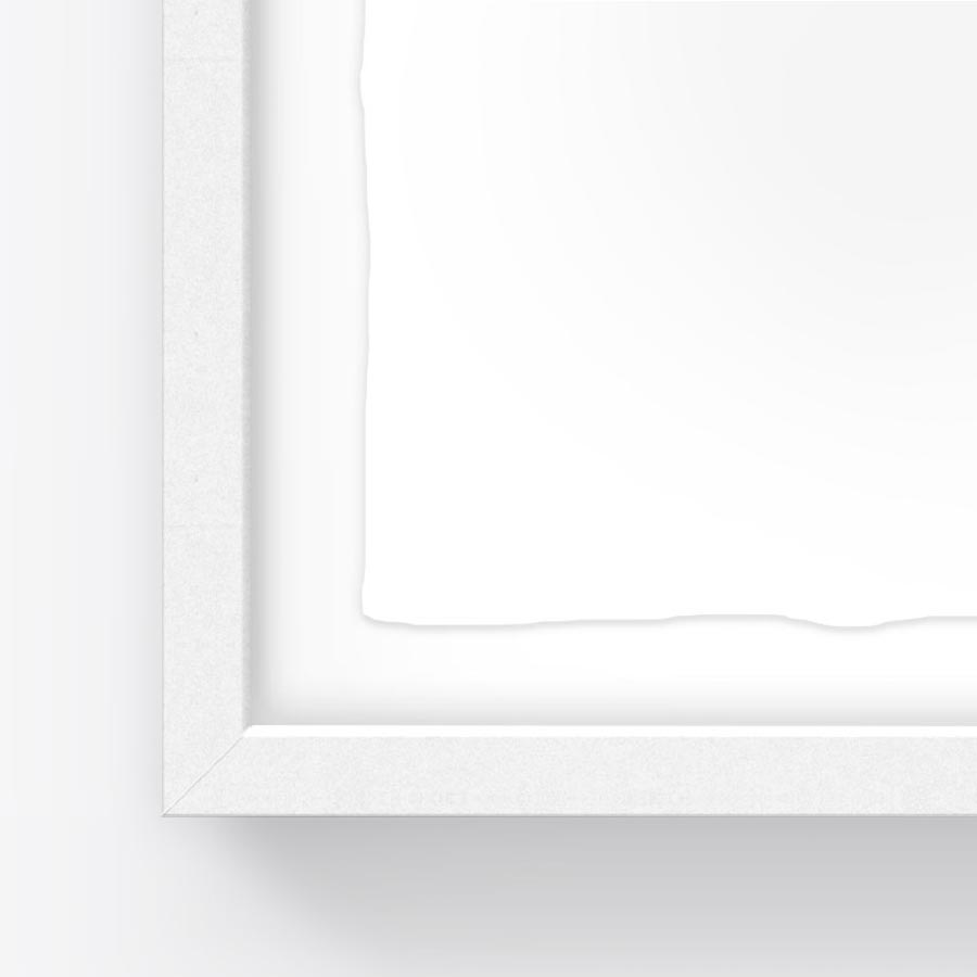 Traditional Gallery Frames