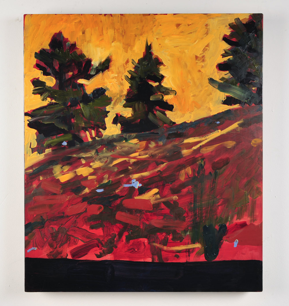 SHUTTER SPEED LUMINOSITY  The Pines  Oil on masonite  59.4cm x 42cm, 2010
