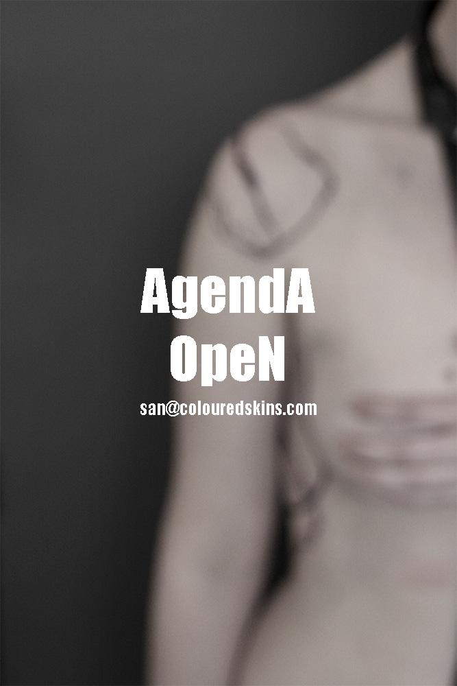 agenda-open-nov.jpg
