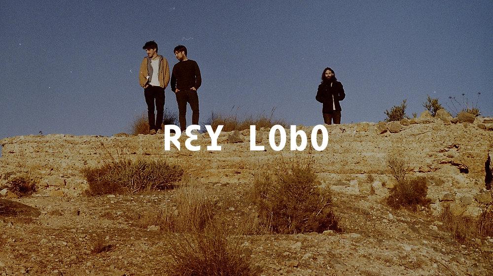 Rey Lobo Web 2048 x1149 v2.jpg
