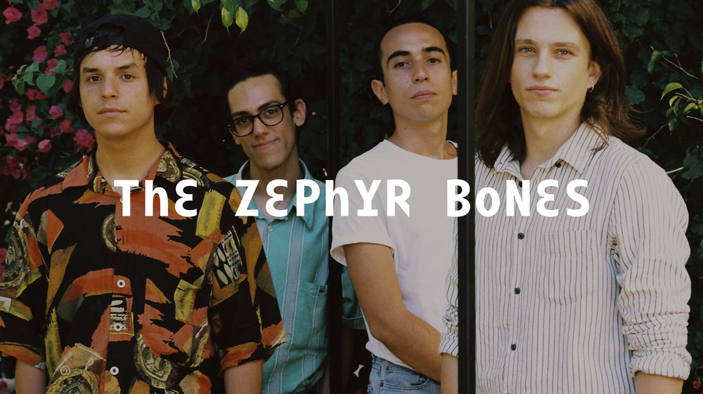 The Zephyr Bones Web 2048 x1149.jpg