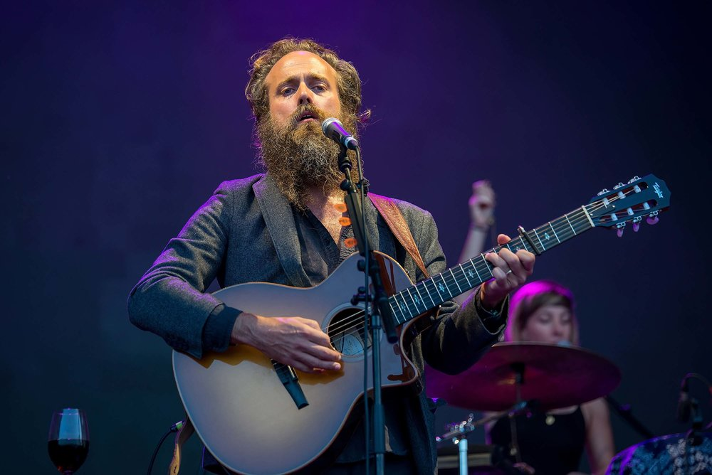 081 - IRON AND WINE - christian bertrand.jpg