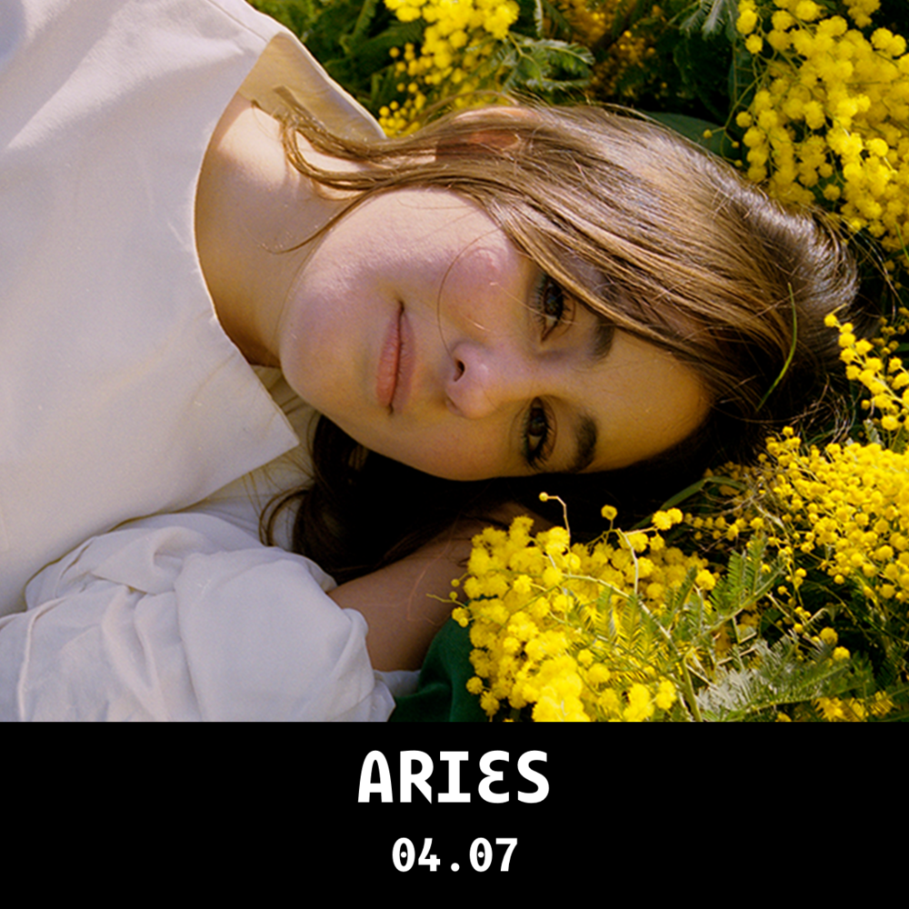 Aries_1x1_web_caixa.png