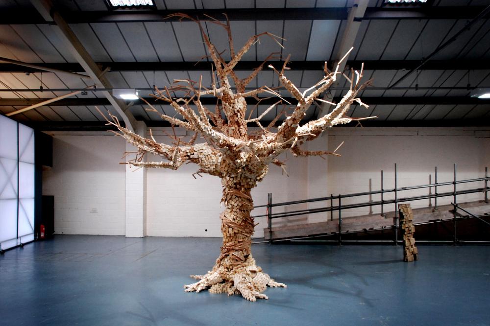 Tree Study, 2013.