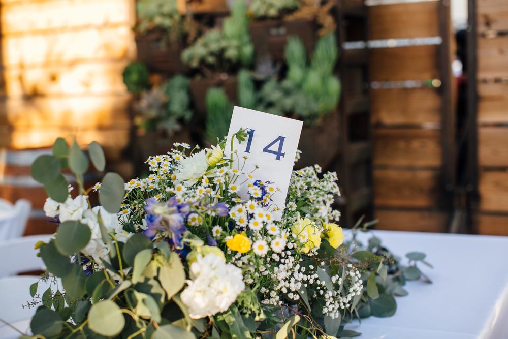 Freeberg Wedding, 2016 (198 of 273).jpg