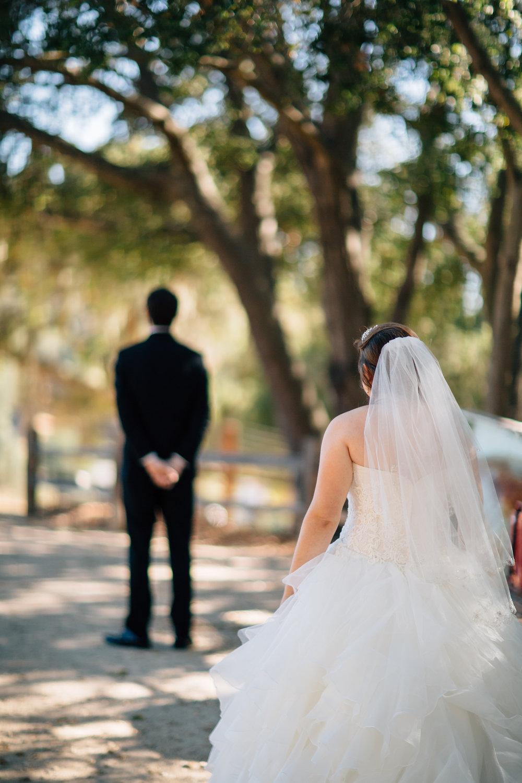 Shellooe Wedding, 2016 (112 of 1042).jpg