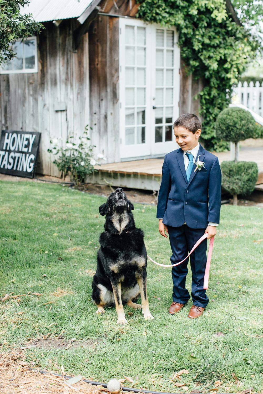 Hembree Wedding, 2017 (131 of 504).jpg