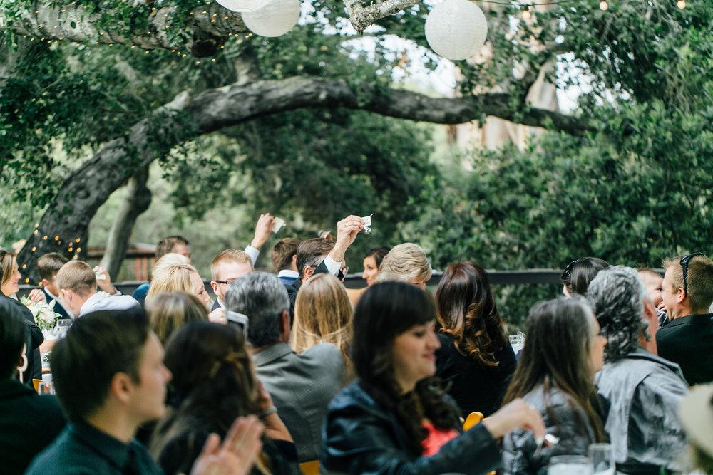 Hembree Wedding, 2017 (316 of 504).jpg