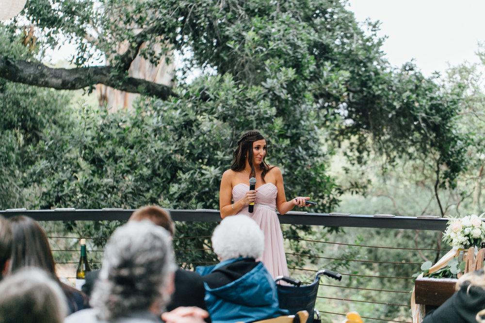 Hembree Wedding, 2017 (349 of 504).jpg
