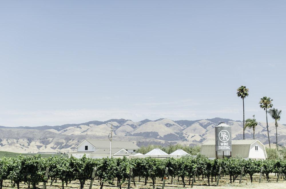 Biddle Ranch-- Kelsey Cameron.jpg