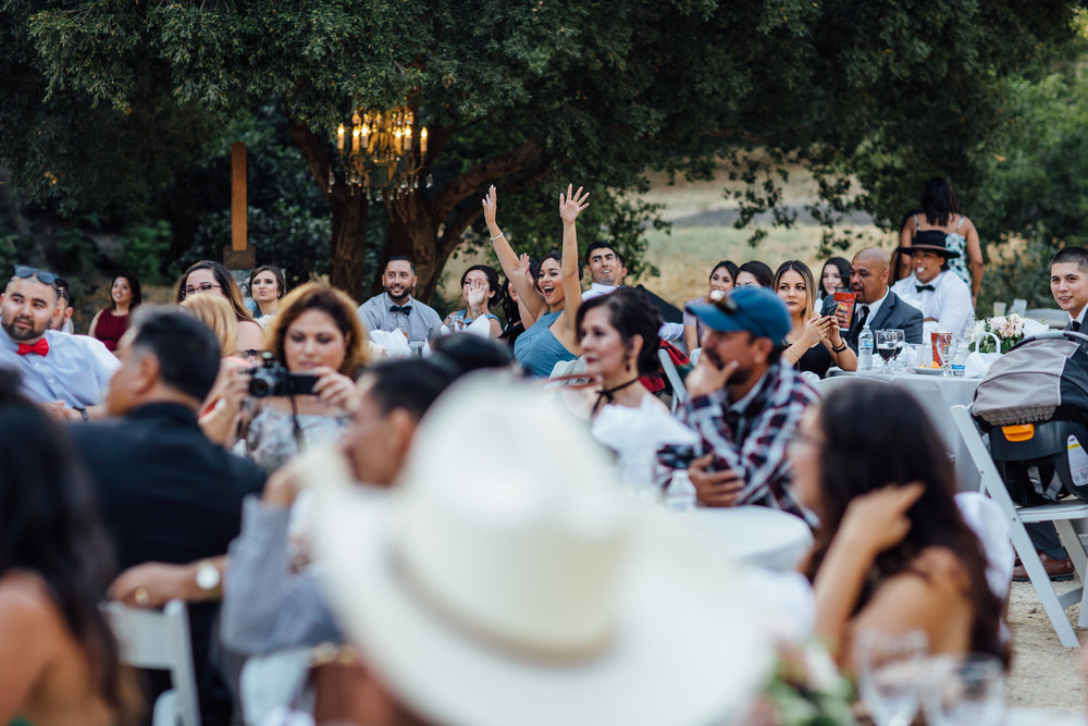 Diaz Wedding, 2017 (225 of 370).jpg
